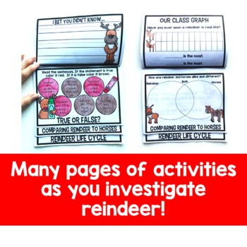 All About Reindeer Flip Up Book