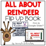 All About Reindeer Activities Flip Up Book