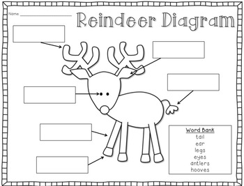 original 426438 4 all about reindeer mini unit by angelia extra special teaching
