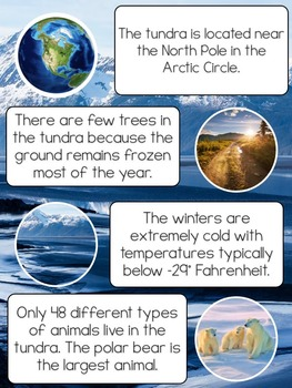 All About Reindeer- using and learning science vocabulary