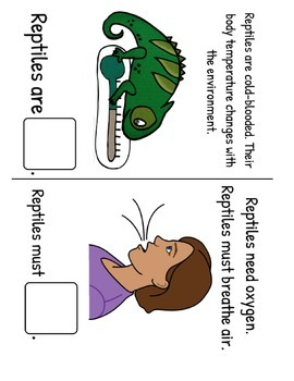All About Reptiles! Fact and Vocabulary Book