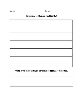 All About Reptiles Lesson Worksheet
