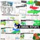 Reptile Unit for Primary Teachers