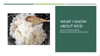 All About Rice Power Point