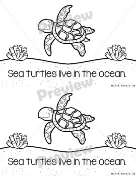 All About Sea Turtles | Emergent Readers | Non-Fiction | Ocean Animals