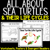 All About Sea Turtles - Life Cycle, Posters, Printables