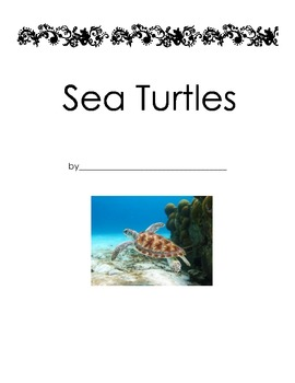 All About Sea Turtles Nonfiction Research Book