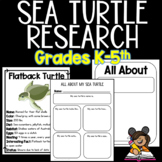All About Sea Turtles Research Project
