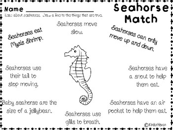 All About Seahorses Unit