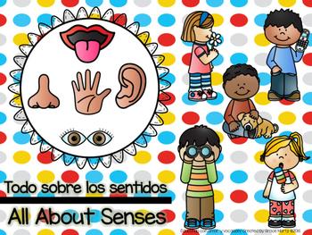 All About Senses/Todo sobre los sentidos