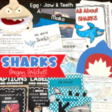 Sharks | Distance Learning