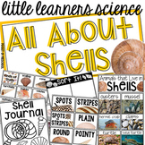All About Shells- Science for Little Learners (preschool,