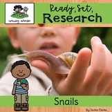 All About Snails (Nonfiction Informational Writing Animal