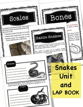Snakes Unit and Lap Book
