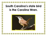 All About South Carolina- Posters