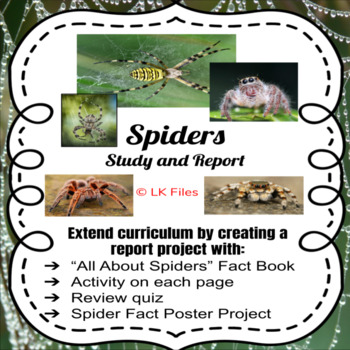 Spiders - A Study and Report Project