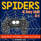 All About Spiders: Spiders Unit for Kindergarten and First Grade