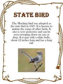 All About Texas State Bird, Mammals, Motto and more
