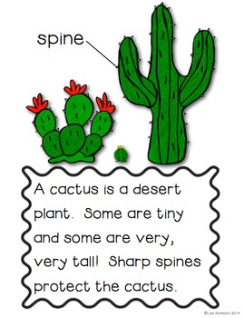 All About The Desert a non fiction book for beginning readers