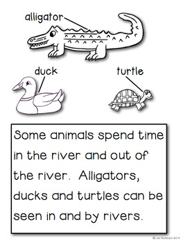 All About The River a non fiction book for beginning readers
