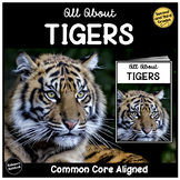 All About Tigers   Nonfiction Reading