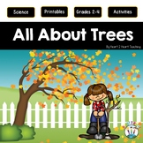 All About Trees: Deciduous and Coniferous   Life Cycle of a Tree