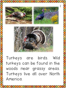 Turkeys Nonfiction Unit