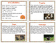 All About Turkeys - Nonfiction Task Cards and Worksheets