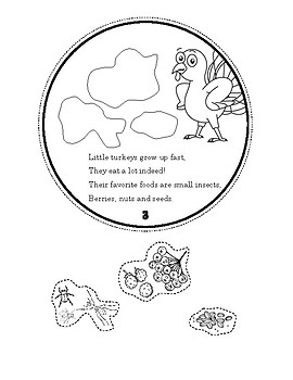 All About Turkeys book for Thanksgiving