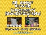 All About Vowels, Consonants, Blends & Digraphs Anchor/Flip Chart BUNDLED
