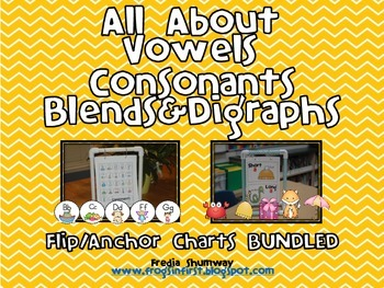All About Vowels Consonants Blends Digraphs Anchor Flip Chart