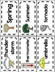 All About Weather & Seasons Word Wall Picture Cards