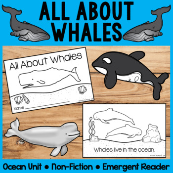 All About Whales   Emergent Readers   Non-Fiction   Ocean Animals