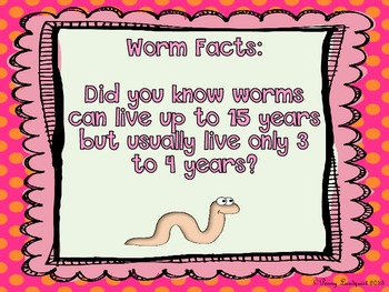 All About Worms: a study in zoology