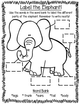 All About Zoo Animals-ELEPHANTS! (crafts, informative text, vocab, & much more!)
