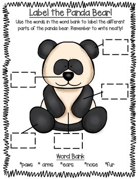All About Zoo Animals-PANDAS! (crafts, informative text, vocab, & much more!)