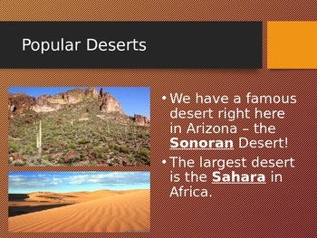 All About the Desert