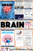 All About the Human Brain