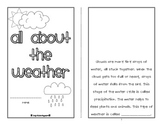All About the Weather (printable mini book)