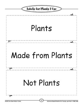 All Animals Depend on Plants: Life Science
