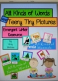 Beginning Dictionary Themed Vocabulary Words with Pictures