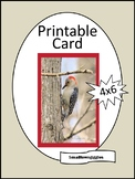 All Occasion Blank Printable Greeting Card, Woodpecker, Teacher Cards