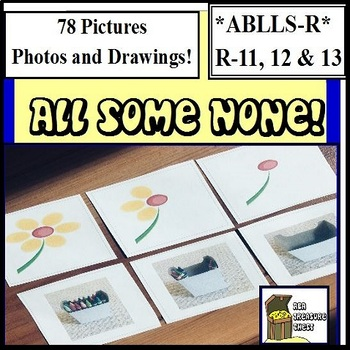 All, Some, None! Identify in Pictures- Autism, ABA, Special Education, Preschool