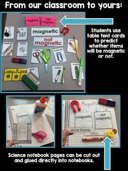 Magnets Sort for Special Education