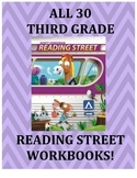 All THIRTY Third Grade Workbooks!