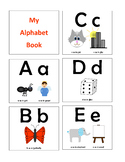 All Things Alphabet - Alphabet Letter and Sound Book, Memory and Sort