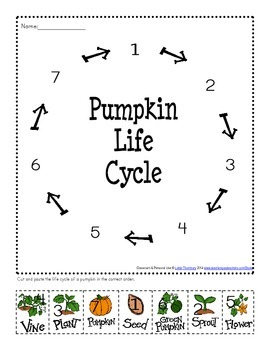 All Things Pumpkin Learning Packet