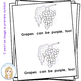 All Things Purple Color Words Emergent Reader
