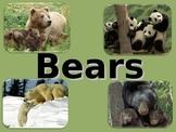 Bears!