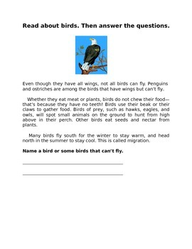 All about Birds for 4th Grade